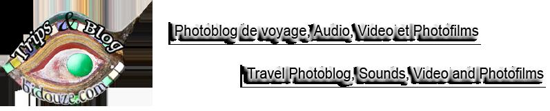 Trips & Blog