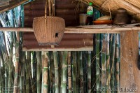 bamboo-shelter-thai