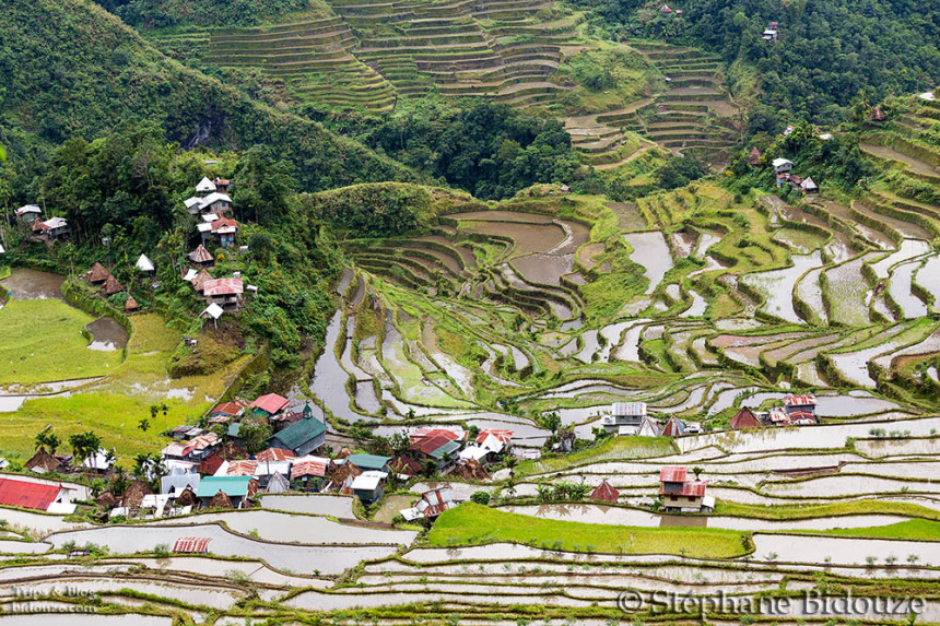 The villages and ricefields of Banaue and Batad
