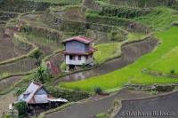 batd-rice-house