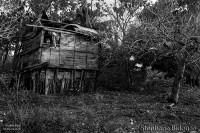 hut-shanty-home-wooden-philippines