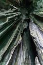 cathedral-el-nido-cave-palawn