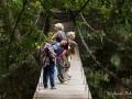 pont-suspendu-thailande-jungle