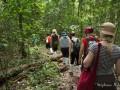 trek-jungle-khao-yai