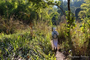 chiang-dao-trekking-randonnee