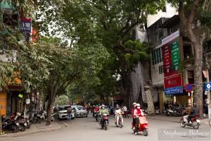 hanoi-street-trees-vietnam