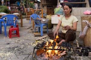 bambou-tige-riz-cuisson