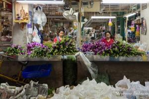 bangkok-orchidée-marché-fleurs