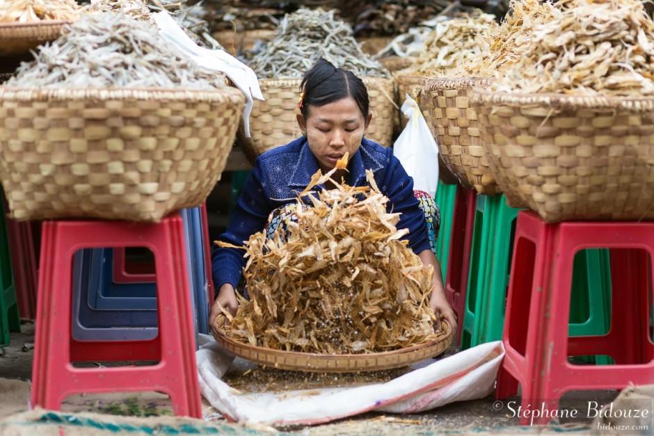 tamissage-poisson-mandalay-myanmar