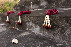 chedi-offrandes-fleurs