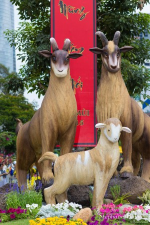 chèvre-année-chinoise-vietnam-saigon-fete