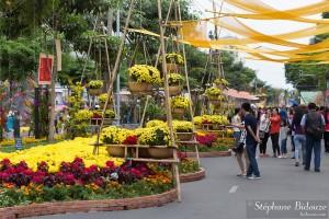 fleurs-saigon-nouvel-an-massif