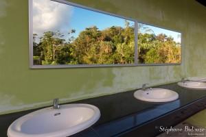 trang-toilettes-miroir-arbres