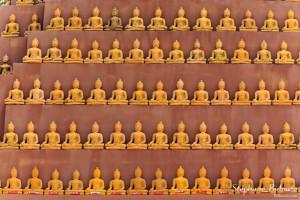 bouddha-statue-rangées-ligne-miniature